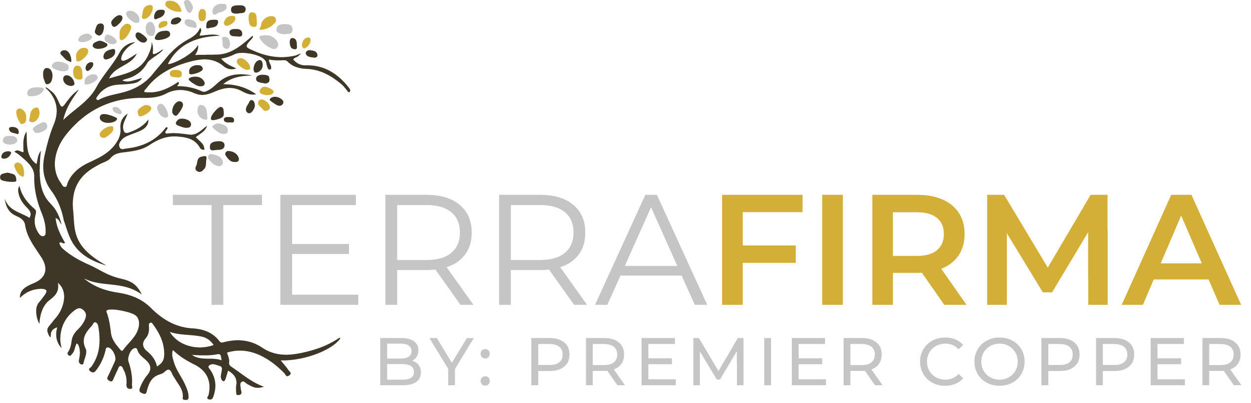 TerraFirma by Premier Copper logo